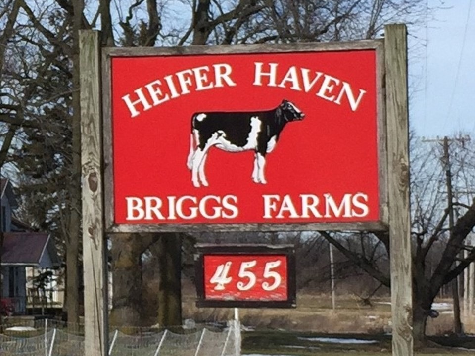Heifer Haven Briggs Farms Sign